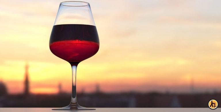 Comment entretenir sa cave à vin ?