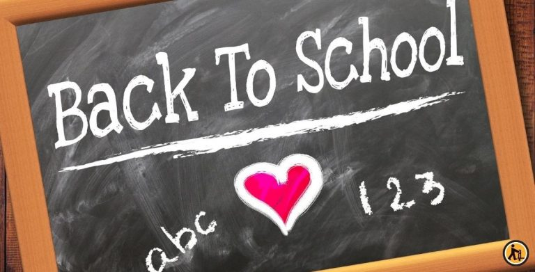 6 conseils pour une rentrée des classes réussie !
